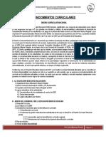 conocimientos_curriculares_2
