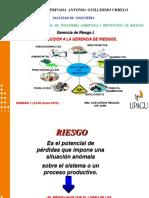 Gestion Del Riesgo 2016.-1