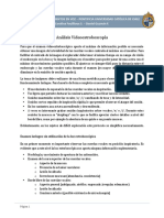 Análisis+Videoestroboscopía