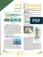 _bio31_40.pdf