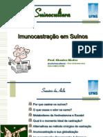 Aula - Imunocastração