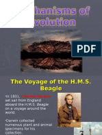 evolution ppt