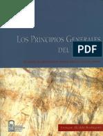 Alcalde Enrique - Los Principios Generales Del Derecho Y Su Funcion De Garantia En El Derecho Publico Y Privado Chileno.pdf
