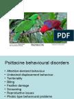 Behaviour L_11 Bird Behaviour