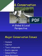 Bird Conservationlecture