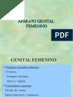 AP. Reproductor Femenino Dra. Ortiz