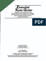 Essential Blues Guitar Lessons