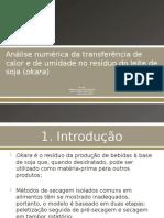 Análise numérica da transferência de calor e de umidade na Okara.pptx