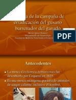 Historia-de-la-campaña-de-erradicación-del-gusano.pdf