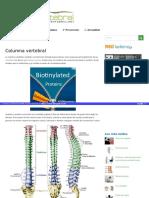 Columnavertebral Net