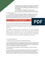 CICLO OTTO.docx