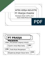Moloco B12 PKL PT Prafa