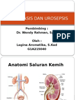 Urolitiasis Dan Urosepsis