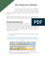 1.Gestión Del Riesgo en Clientes SAP
