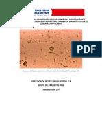 Lineamiento Tecnico Parasitismo Intestinal (2)