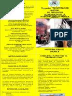 FOLLETO PARA EL PROY ALCOH-MUNICIPALIDAD-FINAL.ppt