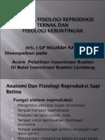 Anatomi, Fisiologi Reproduksi Ternak Dan Fisiologi Kebuntingan Rev
