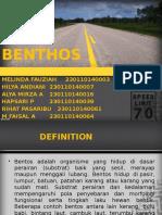 benthos ppt