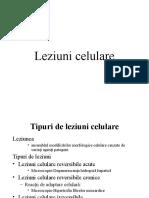 Leziuni Celulare