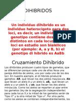 DIHIBRIDOS