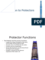 5 Protectors Overview.ppt