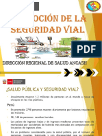 SEGURIDA VIAL.ppt