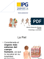 Clase 3. Sistema Tegumentario y Musc - copia.pptx