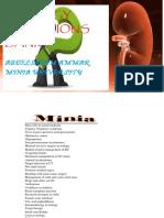 UROLOGY QUESTIONS BANK ..pdf