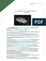 Adaptasi Fisiologi Ikan Air Laut Dan Air Tawar