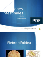 INFECCIONES INTESTINALES