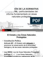 Pedro_Gamboa_Moquillaza_Norm_Ambient (1).ppt