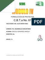 Elaboracion y Comercializacion de Postres Graciela
