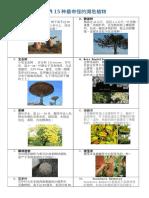 世界15种最奇怪的濒危植物