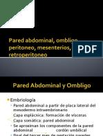 Pared Abdominal, ombligo, peritoneo, mensenterios, epiplón y retroperitoneo