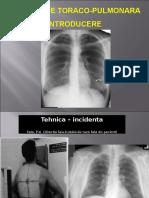 curs 1 pulm