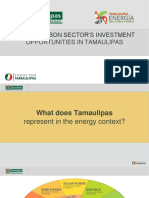 Tamaulipas State Government Energy