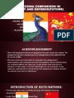 India and China's economy