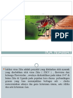 Ppt Virus Zika