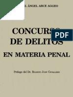 Arce Aggeo, Miguel Angel - Concurso de Delitos en Materia Penal