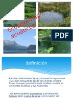 Grupo 1 Ecosistemas Acuaticos 2