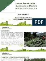 Exposicion Maderas