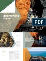 Underground Mining Industry Capability Report