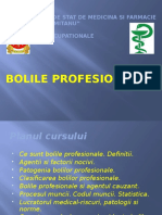 Introducere in Boli Profesionale