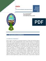 Informe Economia Bolivia Diciembre 2015