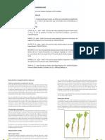 Manejo de Las Semillas y Propagacion de 12 Especies Forestales Nativas de Importancia Economica