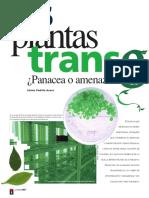 Las Plantas Transgenicas