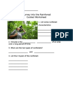 journey into the rainforest guided worksheet