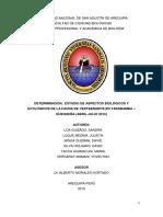 DETERMINACIÓN,  ESTUDIO DE ASPECTOS BIOLÓGICOS Y ECOLÓGICOS DE LA FAUNA DE VERTEBRADOS EN YARABAMBA – QUEQUEÑA (ABRIL-JULIO 2015)