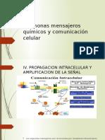 biologia Mensajeroskkk