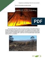 Sobrevivir_Incendios_Arborea